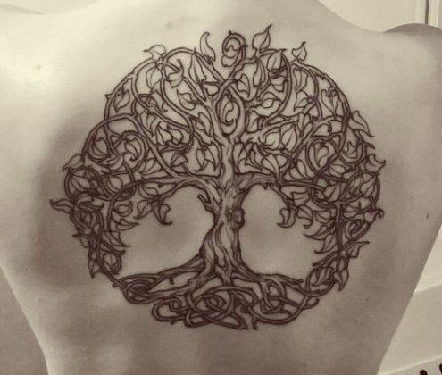 Kelta életfa
