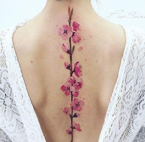 Cseresznyevirág Ázsiában