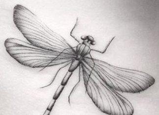 Szitakötő tetoválás